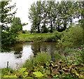 SO3700 : River Usk flows past Llanbadoc Island, Llanbadoc by Jaggery