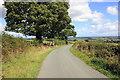 SJ2639 : Offa's Dyke Path by Jeff Buck