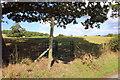 SJ2639 : Kissing Gate on Offa's Dyke Path by Jeff Buck