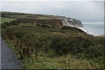 SZ6285 : Coastal path above Red Cliff near Culver Down by Ian S