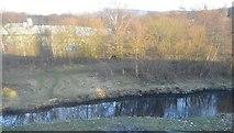 SJ9398 : River Tame by N Chadwick