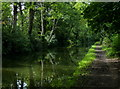 SP1482 : Wooded stretch of the Grand Union Canal by Mat Fascione