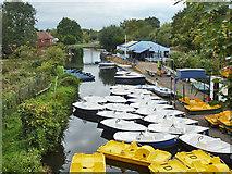 TL3706 : Boat hire base, Broxbourne by Robin Webster