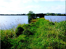 H5776 : Grassy causeway at Loughmacrory Lough by Kenneth  Allen