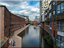 SP0686 : Worcester and Birmingham Canal by Peter McDermott
