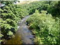 NY6100 : River Lune by Rude Health