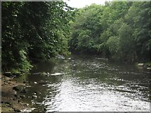 SE2436 : The River Aire by Graham Robson