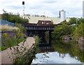 SP0988 : Saltley Railway bridges crossing the canal by Mat Fascione