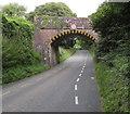 SZ5589 : Low road bridge, Havenstreet by Jaggery