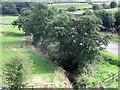 SJ9553 : Endon Brook by Ian Calderwood