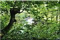 NS3705 : Water of Girvan by Billy McCrorie