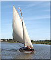 TG4013 : Sailing on the River Bure by Evelyn Simak