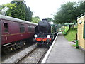 SU6635 : The last train of the day arrives at Medstead & Four Marks station by Marathon