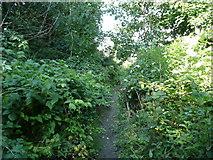 SE1321 : Diversion of Brighouse FP99 approaching Ogden Lane, Rastrick by Humphrey Bolton