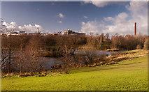 SJ9599 : Stamford Park by Peter McDermott