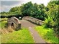 SJ4273 : Picton Lane Bridge by David Dixon