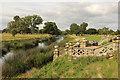 SP2556 : River Avon by Richard Croft