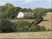 TM1663 : Derrybrook Farm, Debenham by Adrian Cable