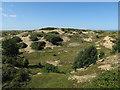 TF8645 : Very sandy dunes by Hugh Venables