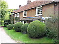 SP7701 : Topiary by cottage at Wainhill by David Hawgood