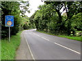 SZ5589 : Low bridge 180 yards ahead, Main Road, Havenstreet by Jaggery