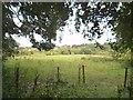 SO9293 : Sedgley Field by Gordon Griffiths