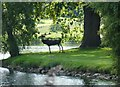 TF0505 : Deer statue near the Lake at Burghley House by Sandra Humphrey