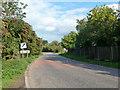 SP9824 : Dunstable Road leaves Tilsworth by Robin Webster