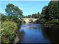 NU0501 : The Road Bridge over the River Coquet, Rothbury by Bill Henderson