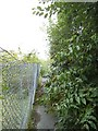 SE3133 : Overgrown footpath off Shannon Street, Leeds by Stephen Craven
