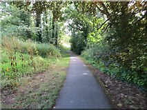 SO0660 : Path to the Lake by Bill Nicholls