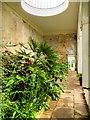 SK3722 : The Orangery, Calke Abbey by David Dixon