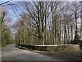 SP1514 : Road to Sherborne by Derek Harper