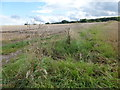 SE7905 : Track and field boundary  near Belton by Graham Hogg