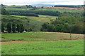 NZ0488 : Farmland near Rothley (1) by Stephen Richards