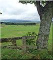 NZ0488 : Farmland near Rothley (7) by Stephen Richards