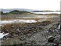 V8940 : Tidal island near Ahakista by Oliver Dixon