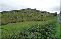 NZ0490 : Codger Fort near Rothley Shield East by Stephen Richards