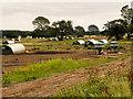 TF7015 : Corrugated Huts at Pig Farm near West Bilney by David Dixon