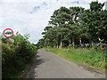 NZ1178 : Gowk Lane near Belsay by Stephen Richards