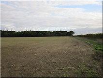 TA1343 : View towards Farnton Plantations by Jonathan Thacker