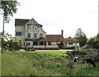 TG3504 : The Beauchamps Arms public house on the River Yare by Evelyn Simak