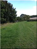 TL3852 : Harlton footpath view by Dave Thompson