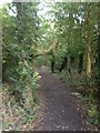 TL3851 : Harlton footpath view by Dave Thompson