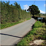 SO6031 : Road out of Brockhampton by Jaggery