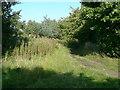 SE1622 : Green Lane, Clifton by Humphrey Bolton
