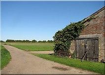 TL4352 : Farm track and barn door by John Sutton