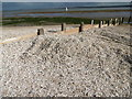 TR0567 : Shells piled up at Shell Ness by Marathon