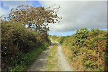 SH3369 : The Anglesey Coastal Path at Llangwyfan-isaf by Jeff Buck