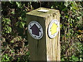 SU7499 : Restricted Byway and Public Footpath markers by David Hawgood